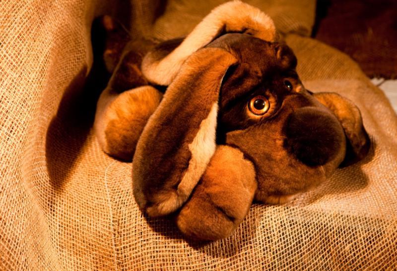Спящая собака, цвет натуральный коричневый, средний размер
