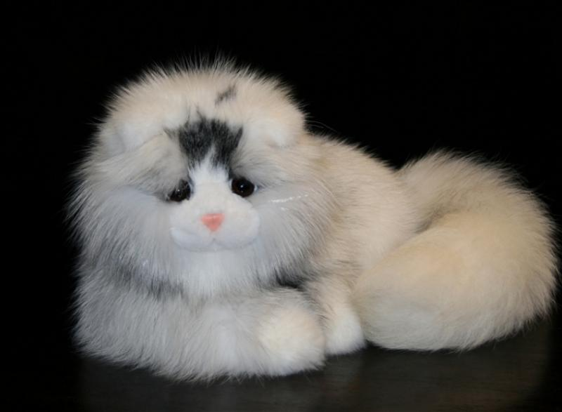 Кот из белой полярной/арктической лисы