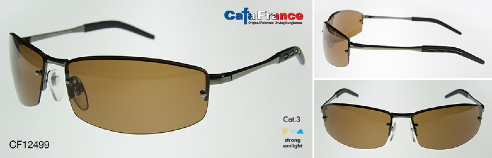 Очки поляризационные мужские Cafa France cf12499